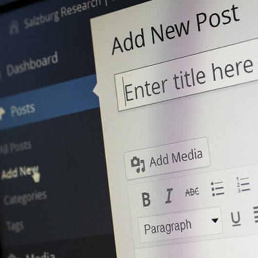 Sučelje WordPress CMS sustava